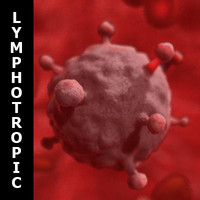 human b lymphotropic virus 3d model