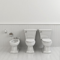 Classical Toilet and Bidet