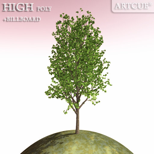tree_047_main.jpg