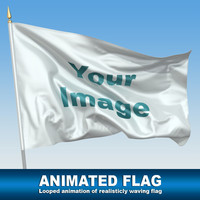 animation waving flag 3d model