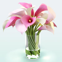 3d calla lily flowers color model