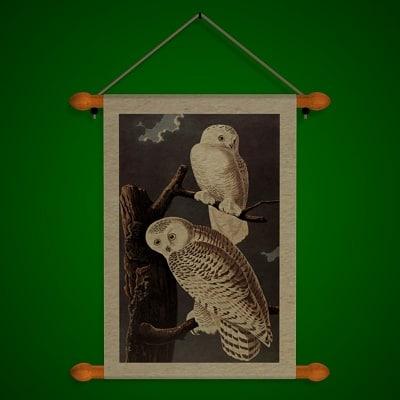 Owls_A.jpg