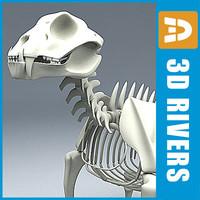 skeleton jaguars obj