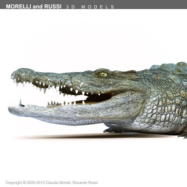 Crocodile_HQ_Texture_TS600-07.png