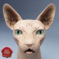 sphynx cat 3d obj