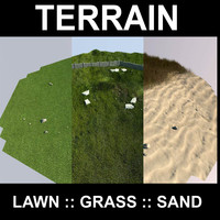 terrain grass flowers 3d model