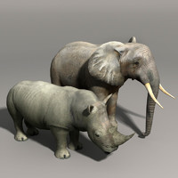Elephant and Rhino
