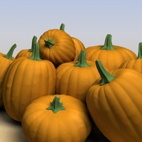 3d model of pumpkins modeled