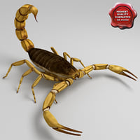 egyptian scorpion 3d model