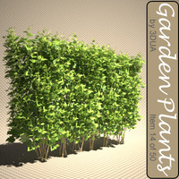 3d model of plant 014 darts gold