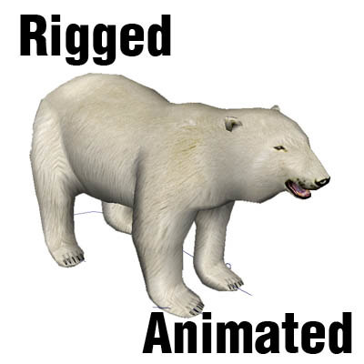 BearWhite1.JPG
