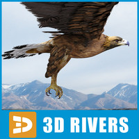 Golden eagle by 3DRivers