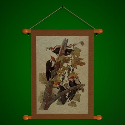 Woodpecker_A.jpg