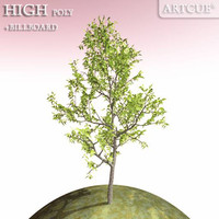3d model tree high-poly billboard