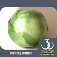 iceberg lettuce 3d max