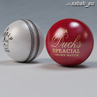 Cricket Ball Standard