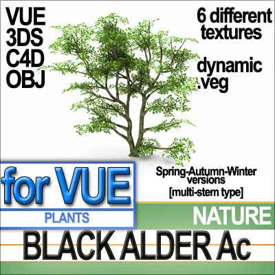 NaturePlantsBlackAlderAcA1.jpg.jpg