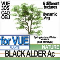 black alder ac dynamic 3d model