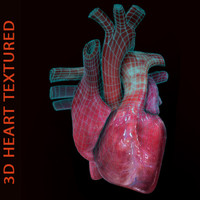 heart 3d x
