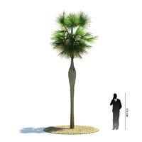 3d exotic tree coccothrinax spissa