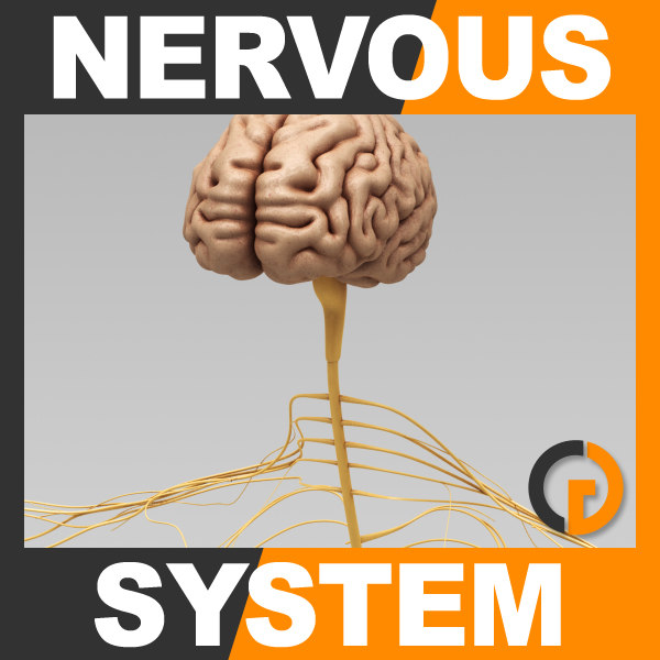 Nervous_th001.jpg