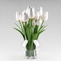 plant_x_08_tulips