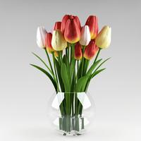 plant_x_13_tulips