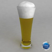 maya beer glass