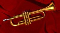 trumpet 2011 fbx