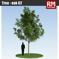 3d tree - model