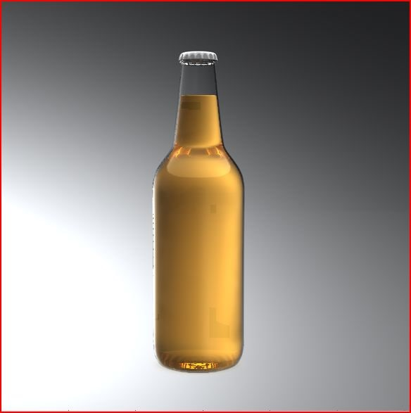beer_bottle2.JPG