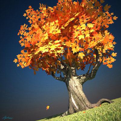 Cermak_Anton_tree.jpg