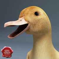 3dsmax duckling pose3