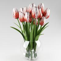 plant tulip 3d max