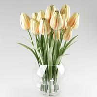 3d model plant tulip