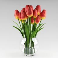 3d model of plant tulip