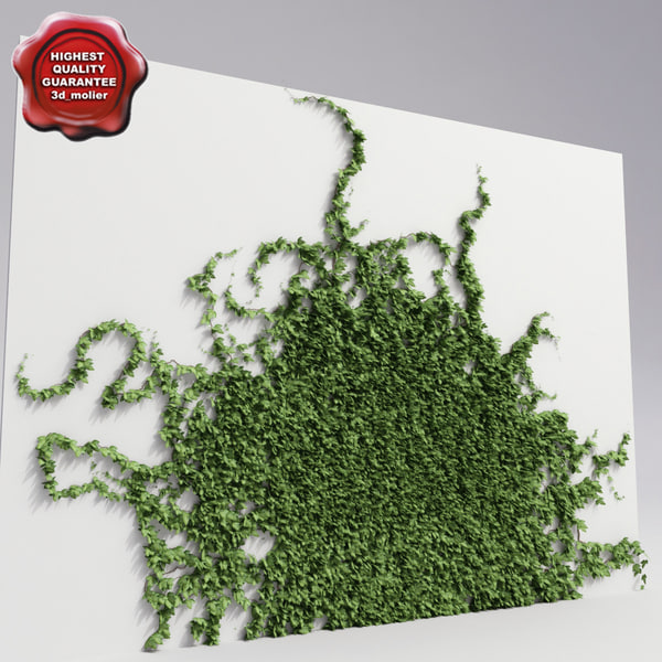 Wall_with_ivy_V6_0.jpg