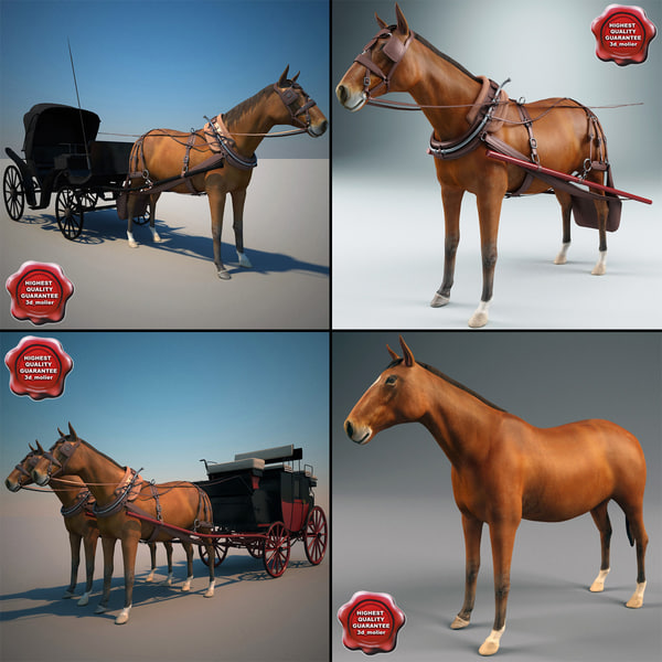 Carriages_Collection_V2_00.jpg