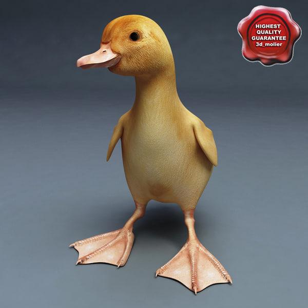 Duckling_Pose1_00.jpg