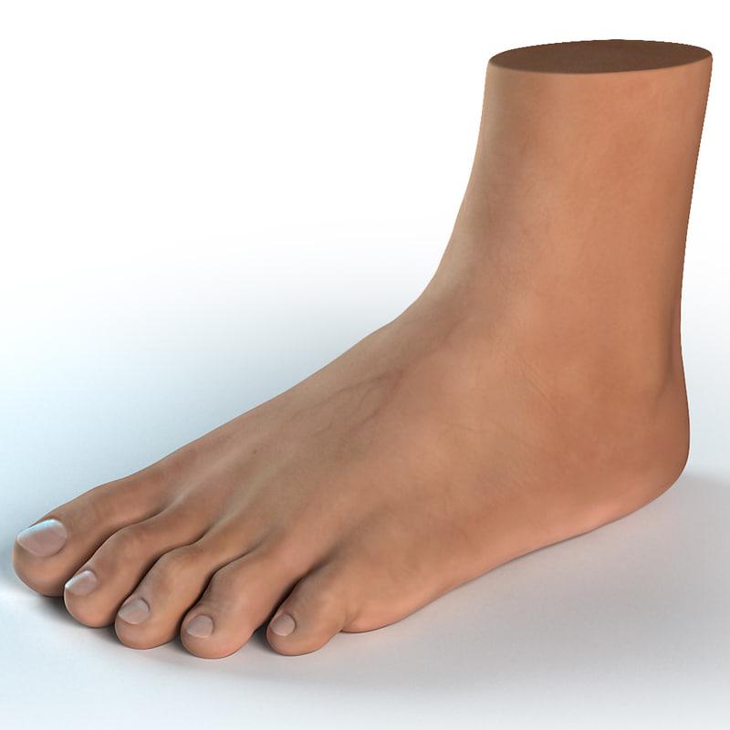 foot_render_vray_1200x1200_001_main_image.jpg