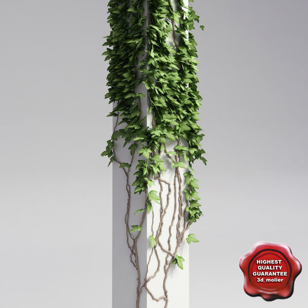 Column_with_ivy_V1_0.jpg