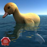 3d duckling pose4 model