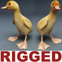 Duckling Rigged