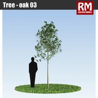 3d model tree -
