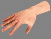 hand human