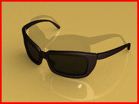 Sunglasses - hinged arms