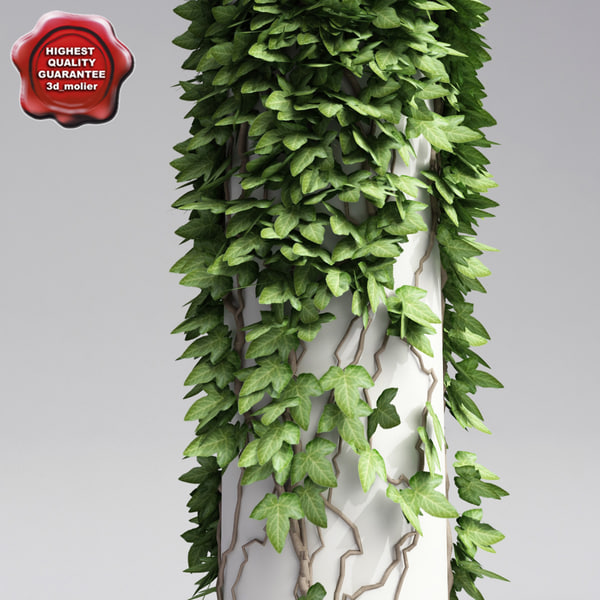 Column_with_ivy_V2_0.jpg