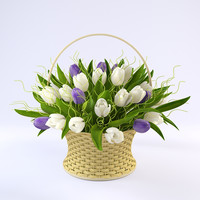 Tulips Basket 2
