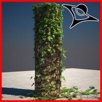 Ivy Tribe