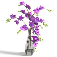 3d model of orchid flower lilies